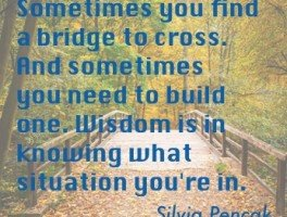 Bridges: Finding Vs. Building
